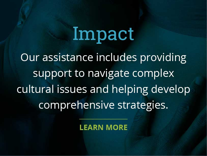 Our assistance includes providing support to navigate complex cultural issues and helping develop comprehensive strategies.